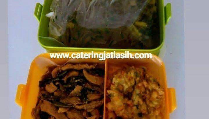 catering-jatiasih-enak-halal-murah